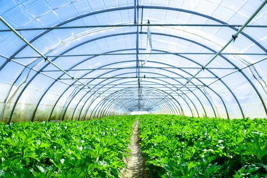فیلم های کشاورزی